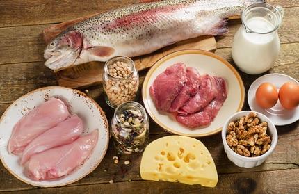 Nahrungsmittel mit hohem Aminosäurenanteil